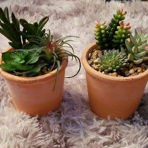 Other - Set of 2 faux succulent terracotta pots w plants